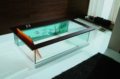 The Moody Acquario Tub has a built-in fish tank