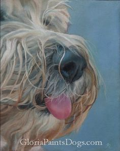 Sadie #dog # painter # artist
