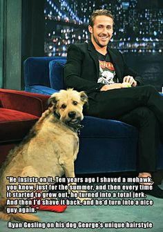 Ryan Gosling on his dog's unique hairstyle…ok, I had no idea Ryan Gosling's dogs name was George... That's my dogs name too!!!
