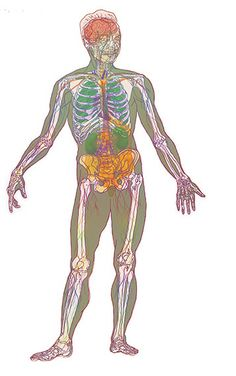Interactive Body Tool: Scleroderma (Systemic Sclerosis): How It Affects The Body See how it is a many-layered disease.
