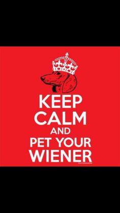 wiener, pets, weeni, keep calm, puppi