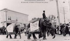 Circus parade, Ashland, 1917