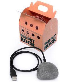 A pet rock... modernized!  Of course the original version was wireless
