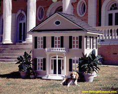 Ultimate Dog House