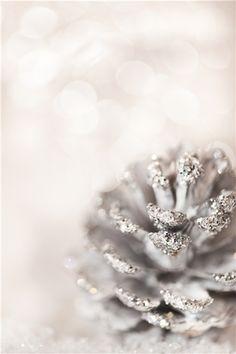 sparkly pine cone