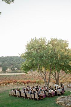 Outdoor Wedding Reception at HammerSky Vineyard