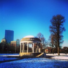 Good Morning Sunny Boston Common. A Beautiful Sunday Morning in Boston. 1.6.13 #bostonusa