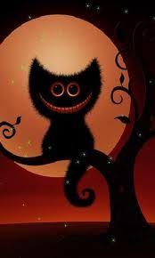 Cute halloween cat looks great