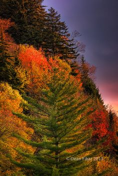 Mountain Morning Colors: Colorful autumn dawn in the Smoky Mountains, by dfikar
