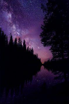 mike berenson, starry nights, starri night