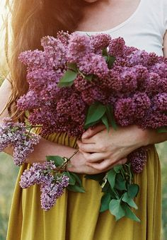 An armful of fresh cut lilacs. One of my favorite Spring flowers~