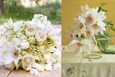 Google Image Result for http://cache.elizabethannedesigns.com/blog/wp-content/uploads/2012/08/White-Clematis-Bouquets.jpg idea, dream, clematis, white clemati, white bouquets, white wedding flowers, protea bouquet, bridesmaid bouquets, floral