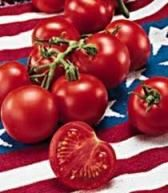 Fourth of July tomato: early season variety, dependability, disease resistance, and large volume of fruit.   Learn all about types of tomatoes and how to classify them at http://www.tomatodirt.com/tomato-varieties.html. .....We.'re trying these this year instead of the Early Girl.