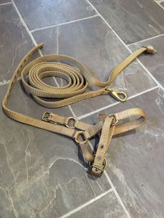 Zephyr alpaca or llama halter & flat lead - tan with brass fittings