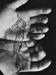 Dead bird. by violetvika  -absolutely gorgeous and heartfelt concept