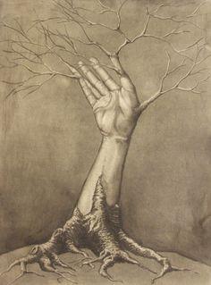 http://th00.deviantart.net/fs39/PRE/i/2010/198/5/a/Tree_Limb__by_Malignanttoast.jpg