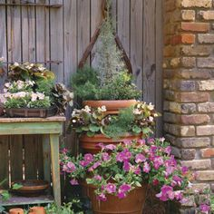 Petunias, Begonias and Cypress : Container Gardening Ideas From Southern Living