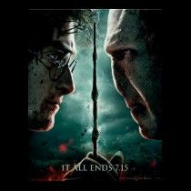 voldemort poster, harry potter, posters