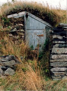Old root cellar