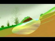 The Swale Plume - how a swale captures water and transforms the landscape