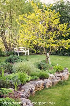 Love the natural rock retaining wall