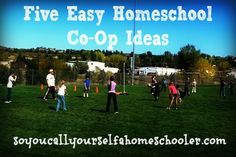 Five Easy Homeschool Co-Op Ideas :: Renee shares five easy yet effective homeschool co-op ideas to help you get started in planning some group activities. :: So You Call Yourself a Homeschooler?