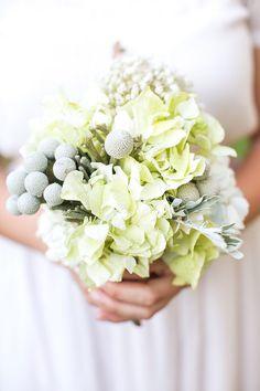 green hydrangea bouquet, photo by Adene Photography http://ruffledblog.com/botanical-stellenbosch-wedding #weddingbouquet #flowers