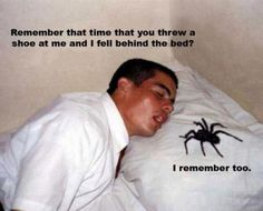 Yikes memori, god, beds, bugs, missionari, funny pictures, come backs, thought, spider