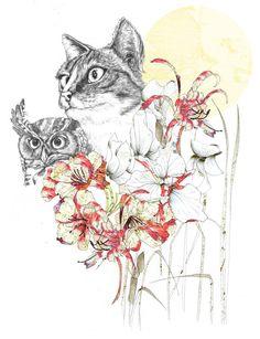 {owl & the pussycat} by me & oli