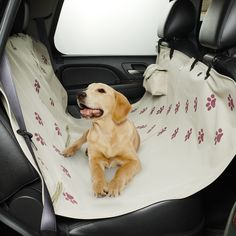 This great pet hammock, available at Tuesday Morning, keeps your pets comfortable and protects your car seats during long road trips. #pet #travel #TuesdayMorning