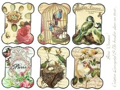 lovely vintage birds free printable tags #vintage #birds #free #printable #hang tags