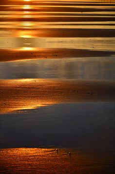 .... sunset