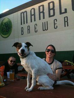 marbl breweri