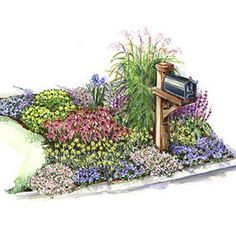 Mailbox Garden  Plan a garden around your mailbox for an inviting and cheerful look.