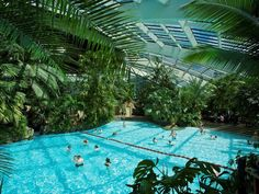 The Subtropical Swimming Paradise by Center Parcs UK, via Flickr
