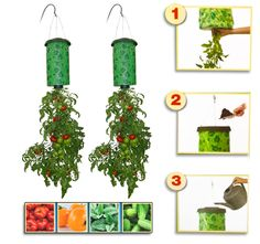 7/13/2012  $9.99  + FREE SHIPPING 2-Pack: Topsy Turvy Upside Down Tomato Planter w/ Vertical Grow Bag - World's Easiest Way to Grow Tomatoes