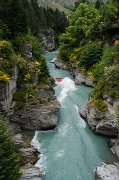 Jet boating the Shotover River, South Island, New Zealand (by Arbron)