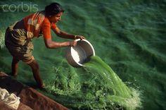 India, Karnataka State, Badami, laundry woman