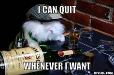 I can quit!
