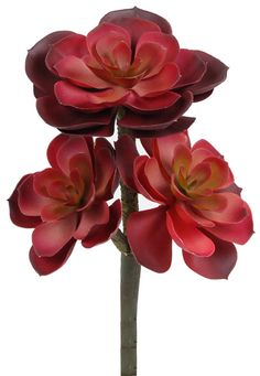 Artificial Echeveria Color: Burgundy. These beautiful #silk #plants are available at #Silk #Spectacular @ #silkspectacular.com
