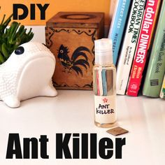 DIY eco-friendly ant killer. Half cup water, cup of sugar, tablespoon of borax. Place a few drops on piece of cardboard out of the way of pets