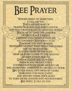 Bees:  #Bee Prayer.