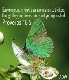Proverbs 16:5