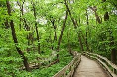 Nineteen miles of hiking trails snake through 100-year-old Fontenelle, 10 minutes south of downtown Omaha. Ideas for urban escapes:   http://www.midwestliving.com/travel/around-the-region/4-restful-urban-parks/