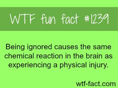 psychology facts MORE OF WTF FACTS are coming HERE awesome and fun facts ONLY
