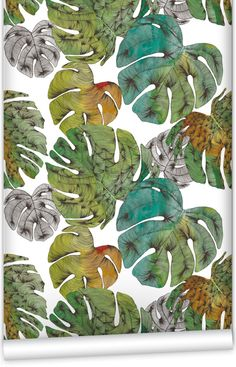 Monstera by Claire Leina
