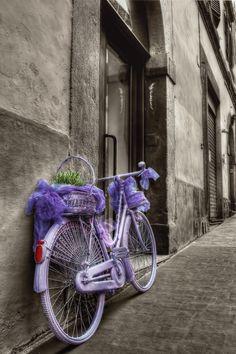 Lavender bike...