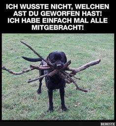 """Besten Bilder, Videos und Spr??che und es kommen t??glich neue lustige Facebook Bilder auf <a href=""""http://DEBESTE.DE"""" rel=""""nofollow"""" target=""""_blank"""">DEBESTE.DE</a>. Hier werden t??glich Witze und Spr??che gepostet!"""