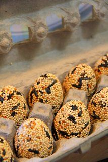 Easter Gift Idea | Birdseed Eggs to hang or gift  | Mix as listed   8 1/3 to 1/2 cups bird seed  1/3 cup gelatin  1 1/2 cups water  36-38 fillable plastic Easter eggs.   Lightly coat the molds with the vegetable spray.  Pack the eggs using a teaspoon, snap them together and place into an egg carton for chilling.   Chill the eggs for a couple of hours and remove carefully. Be sure to dry the bird seed eggs in a paper egg carton as styrofoam tends to encourage mold.     makes about 3 dozen eggs.