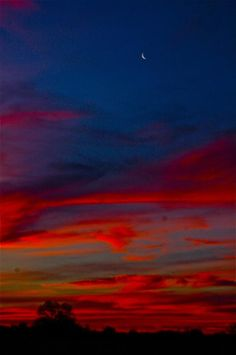 ✯ Morning's Moon